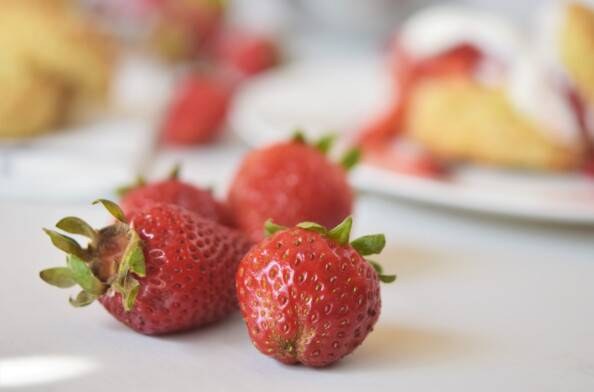 close up of local strawberries with shortcake in the background