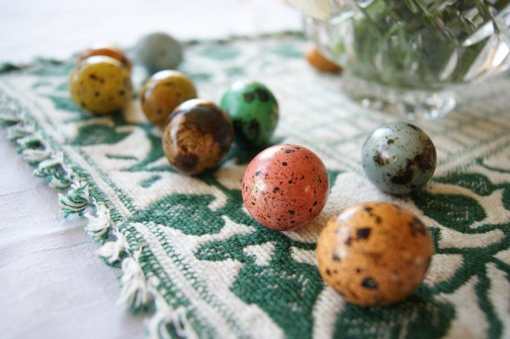 close up of dyed quail eggs in various colours on a white & green placemat