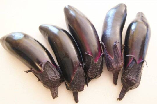 local Umi Nami eggplants