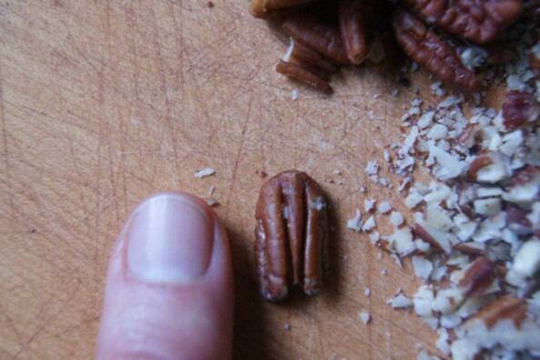 Baby Size Native Pecans
