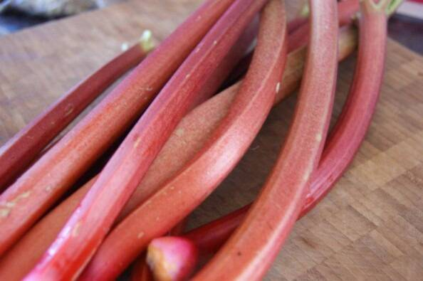 Stalks of Red Rhubarb