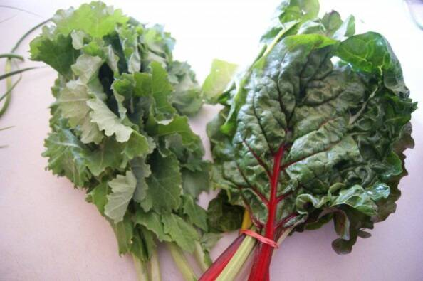 Bundles of kale and Chard