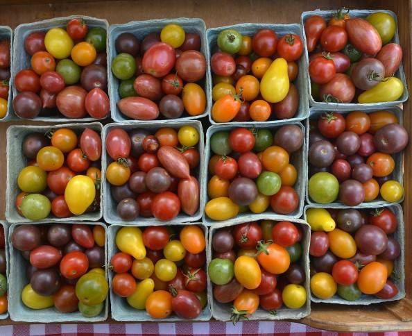 overhead view of farm market cherry tomatoes