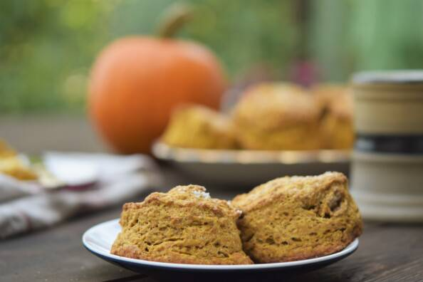 two pumpkin spice scones on a plate with a pumpkin, a platter of scones, and a mug of tea in the background