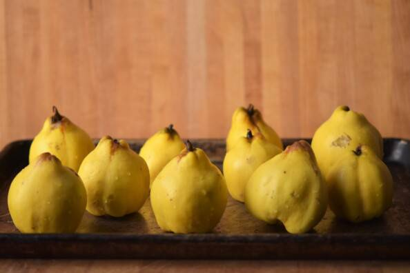 fresh quince arranged on a baking sheet